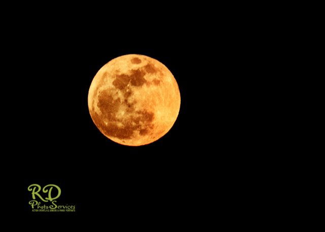 red moon los angeles - photo #9